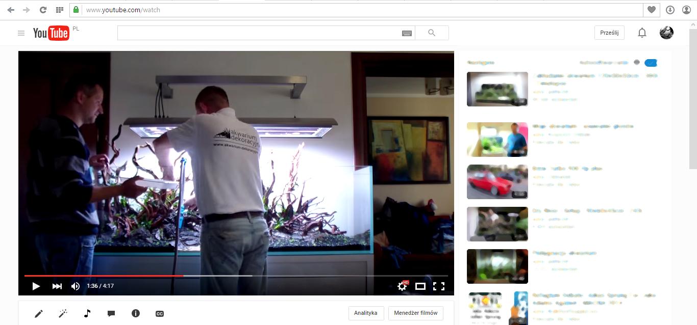 Akwarium dekoracyjne - Zakładanie akwarium Planted aquarium 160x60x50 - Timelapse 2 a